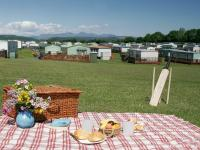 Special Offers from Old Park Wood Holiday Park